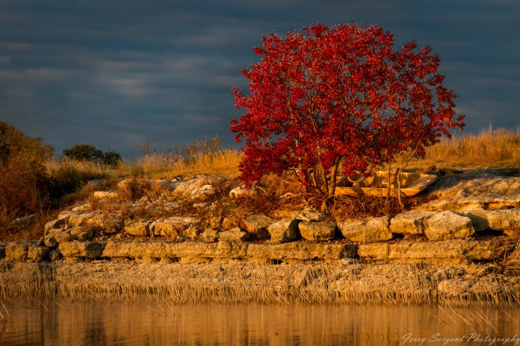 Jerry Sargent Photography / Crimson Leaves